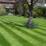 An Introduction to National Lawn Care Month